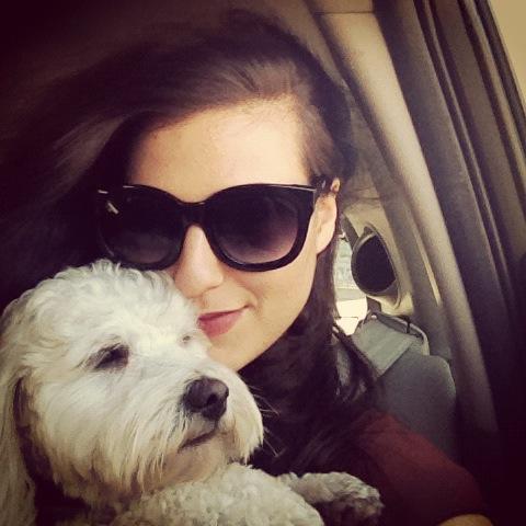 Dana-Suchow-Dog-Car