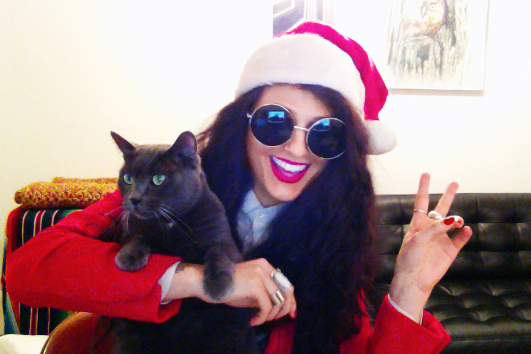 Do The Hotpants Dana Suchow Cat Christmas 1